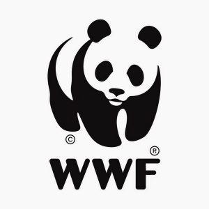 Konferencja Gospodarka o Obiegu Zamkniętym - nowa utopia czy droga konieczna? Warszawa, Fundacja WWF Polska i SGH